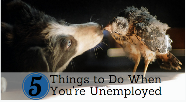 Five Things to Do When You're Out of Work