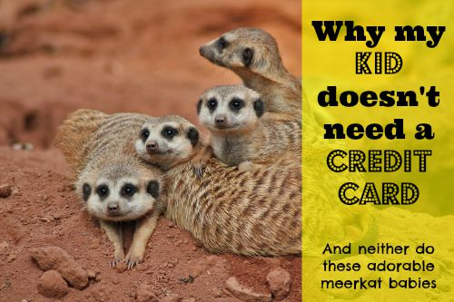 why my kid doesnt need a credit card